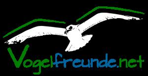 vf_logo_big