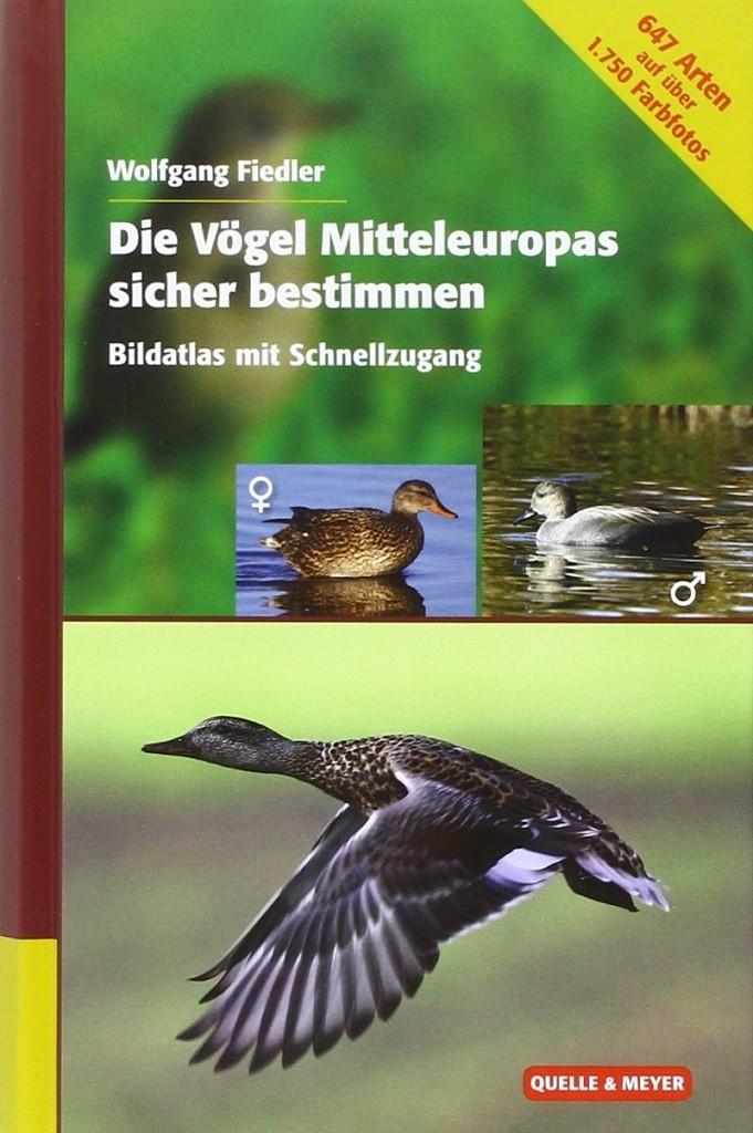 Die Vögel Mitteleuropas sicher bestimmen